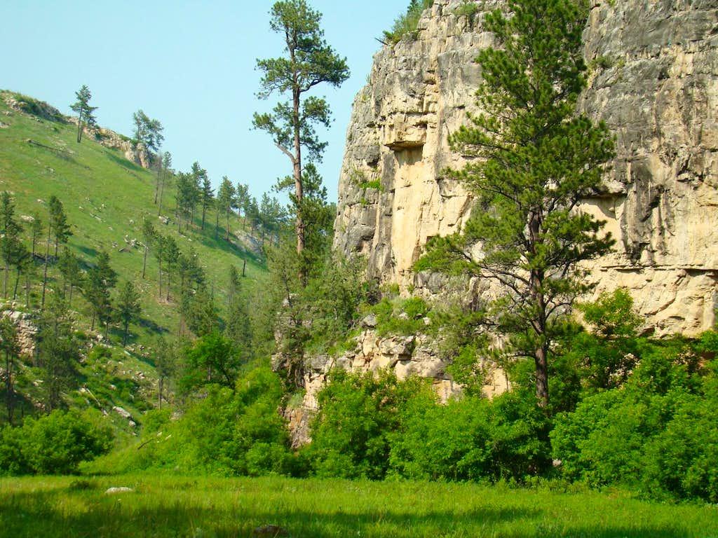 Beaver Creek Canyon Walls
