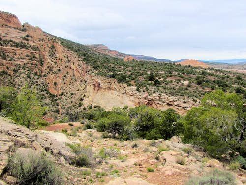 On Fruita Dugway Trail