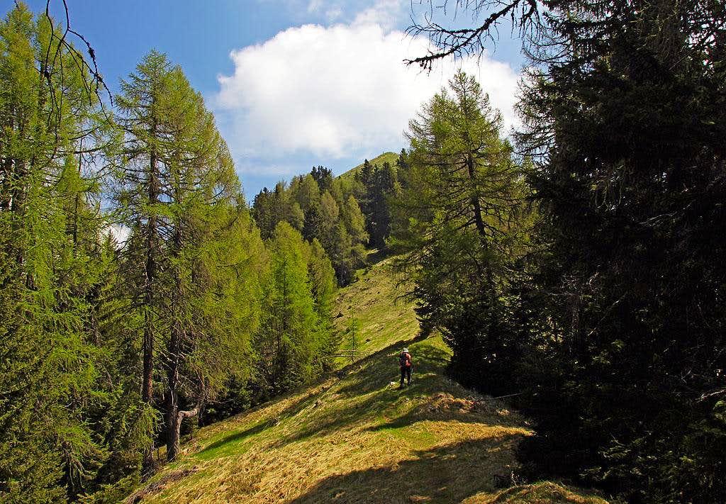 Towards the summit of Tschekelnock