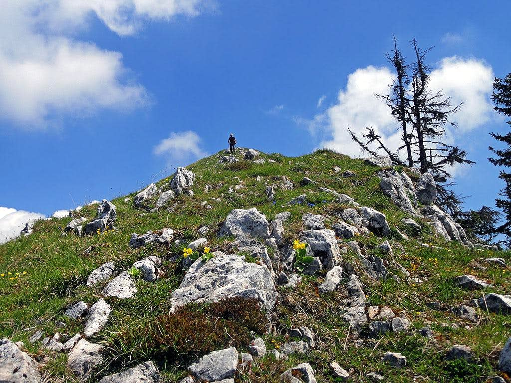 On the SW ridge of Tschekelnock