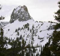 Snowboard tracks decend the...