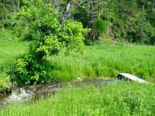 Trail Crossing Bridge