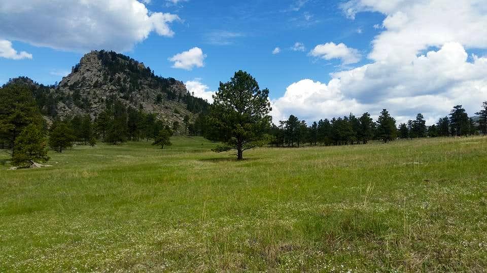 Crosier Mountain Crags & Meadow