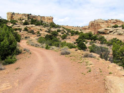 On Serpents Trail