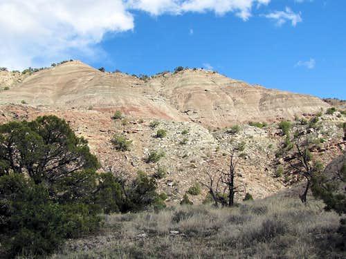 Lower Ribbon Trail