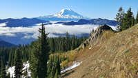 Mount Adams from Cispus Mountain