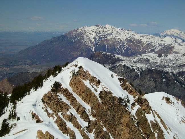 From summit of Mount Ogden...