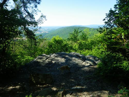 View from White Rocks