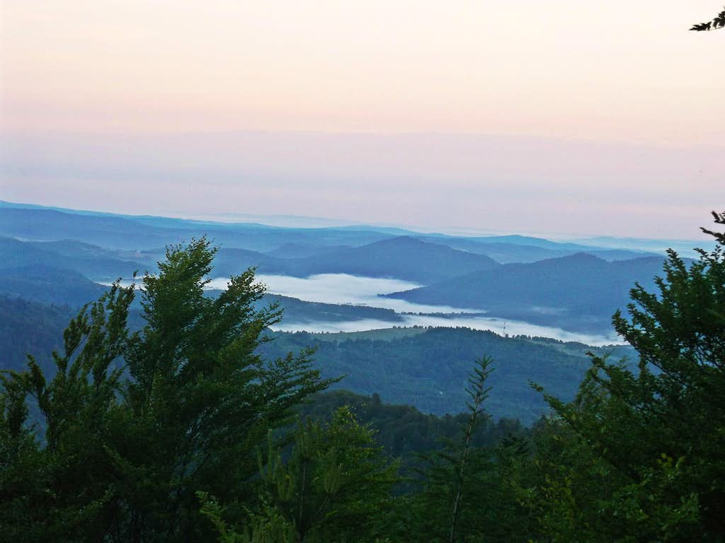 Delicate haze swamp valleys at dawn