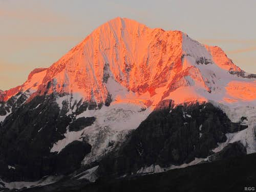 Alpenglow on the Königsspitze