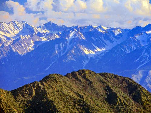 West summit ridge of Black Mtn. with the Sierra backdrop.