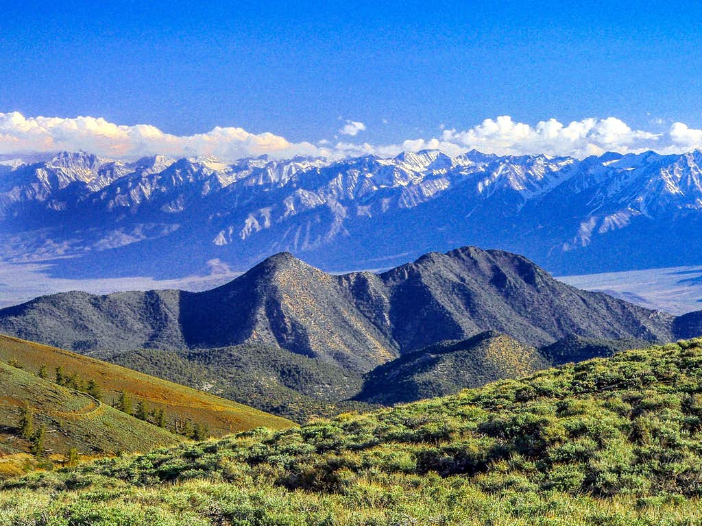 Black Mtn., White Mtns. with the Sierra across Owens Valley