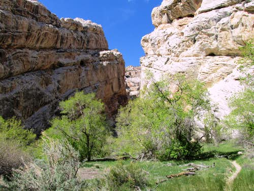 Lower Hog Canyon