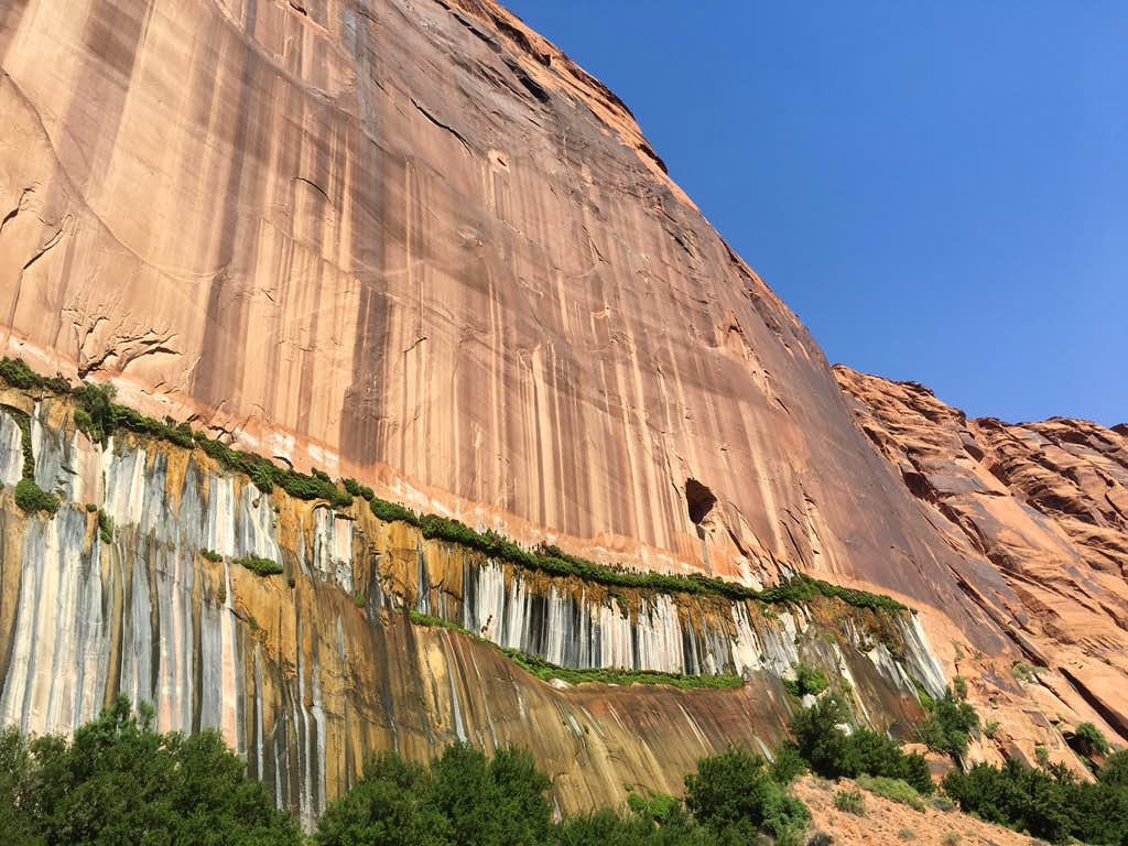 Water from Lake Powell seeping through the walls of Lower Glen Canyon, just beneath the dam