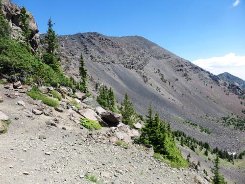 View towards Humphreys Peak summit