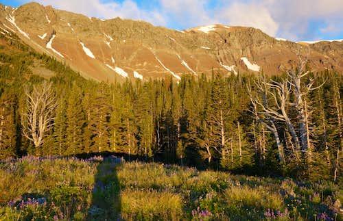 Chief Joseph Mountain at Sunrise