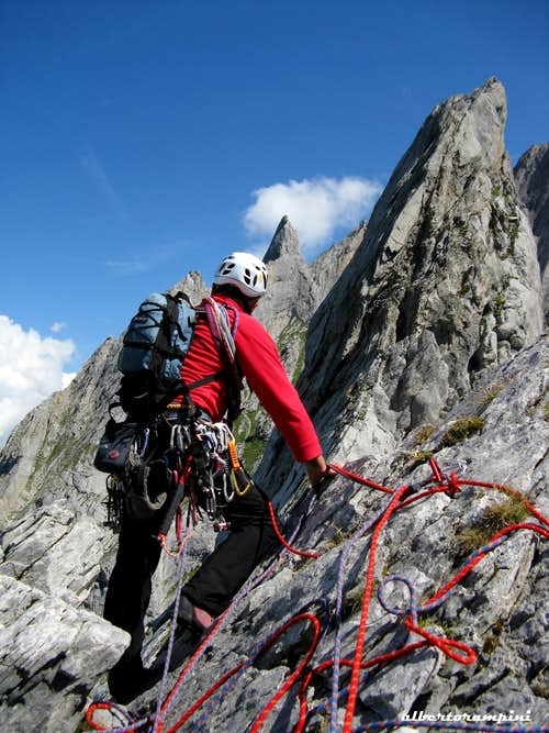 Belay near the summit, Rosenlauistock