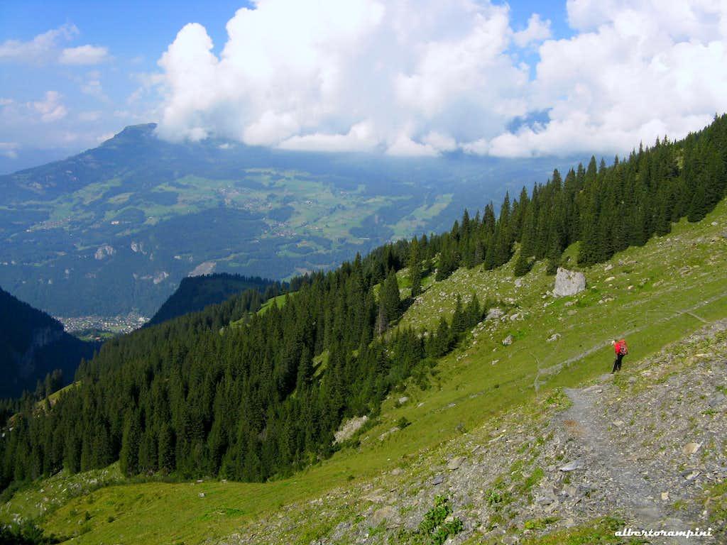 The trail to Engelhornerhütte from Rychenbachalp