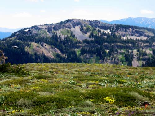 Ellis Peak 8,740' from the Barker Ridge