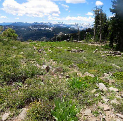 Desolation Wilderness from the Barker Ridge
