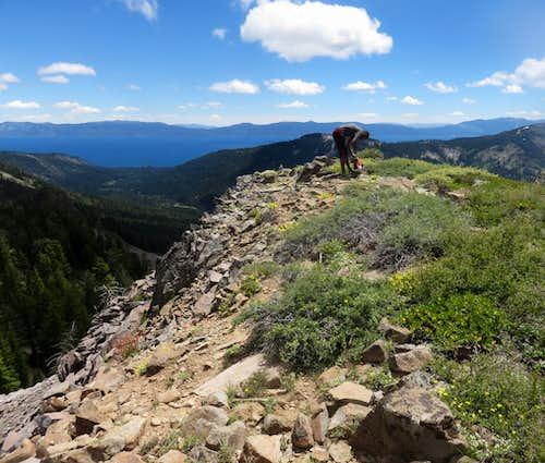 On top of Peak 8652 looking towards Lake Tahoe