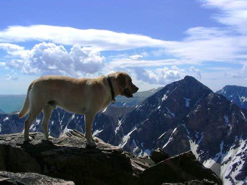 Beartooth 12er's, Whitetail Peak, Silver Run Peak and Sundance Mountain