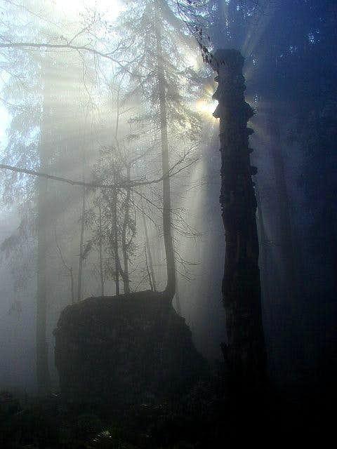 Near Crno jezero
