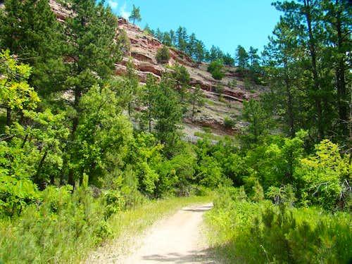 Near the Little Elk Trailhead
