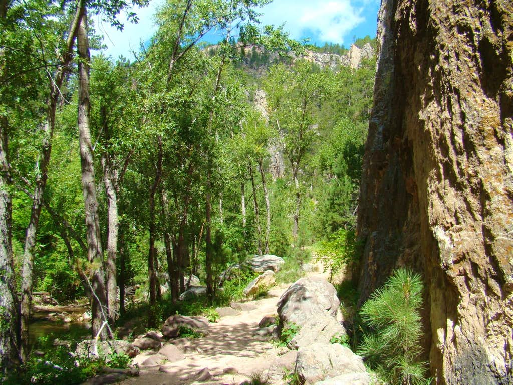 A Rugged Area of the Little Elk Canyon Trail