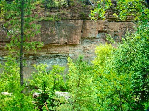 Little Elk Canyon Limestone