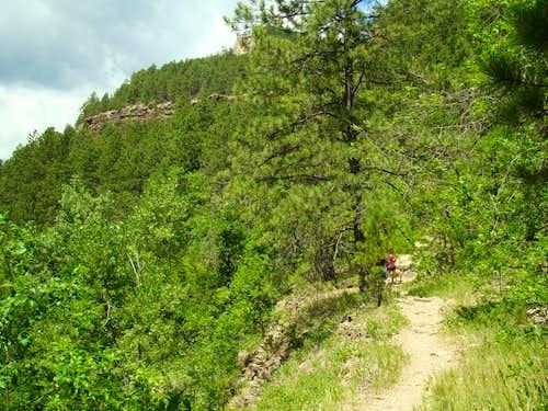Little Elk Trail upper path