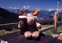 7/2002 - Urs the Elk enjoys...