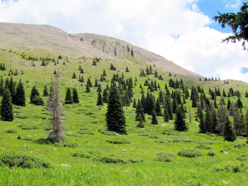 Southeastern slopes of Mt. Hope