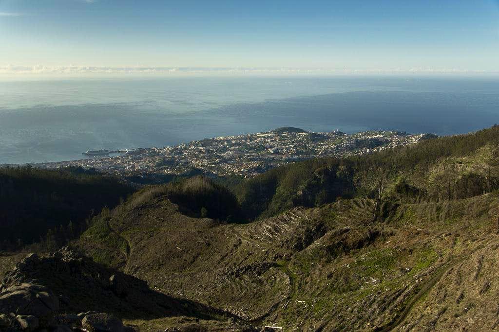 Looking down on Funchal