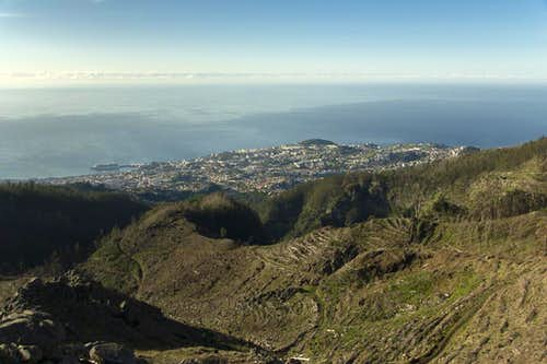 Looking down on Funchal