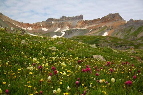Pilot Knob and wildflowers