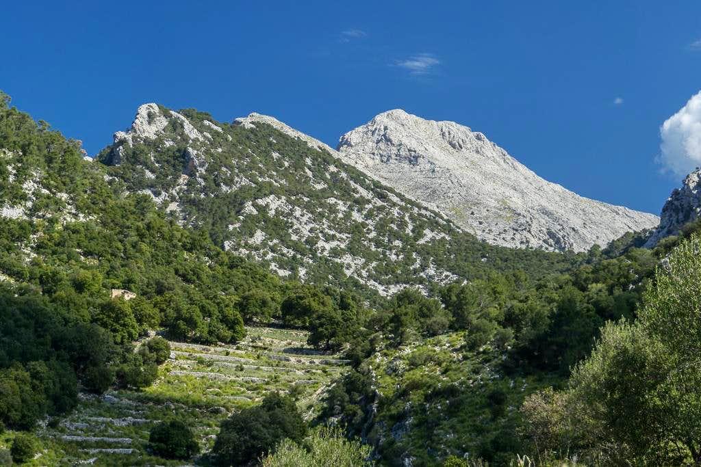 Puig des Castellot des Rafal (896m) and Puig de Massanalla (1367m)