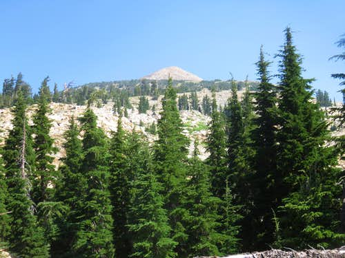 Pyramid Peak from the forest