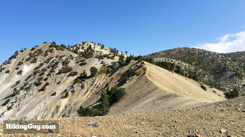 Hike to Mt Baldy on Bear Canyon Trail