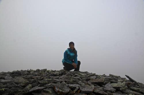 Chicago Peak summit