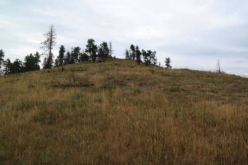 Bald Mountain, Boulder County Open Space, Colorado