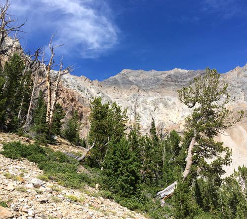 Mt, Idaho
