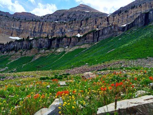 Utah Classic - Aspen Grove Semi-Loop