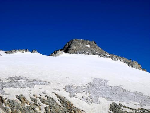 Vedretta di Lares and Corno di Cavento from East
