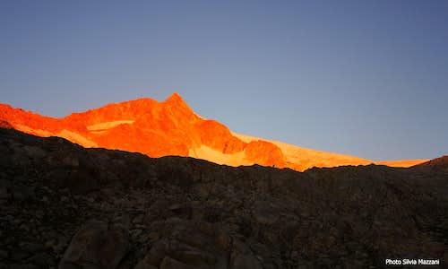 Carè Alto at sunrise