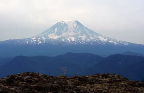 Mount Adams from North Juniper Peak