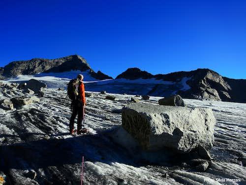Start of Stampflkees glacier