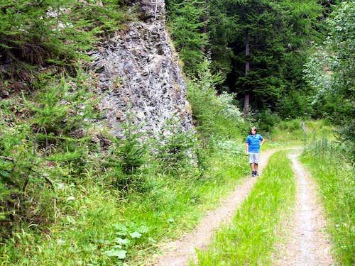 Val Buthier Alternative trail towards Besenval Alp 2016