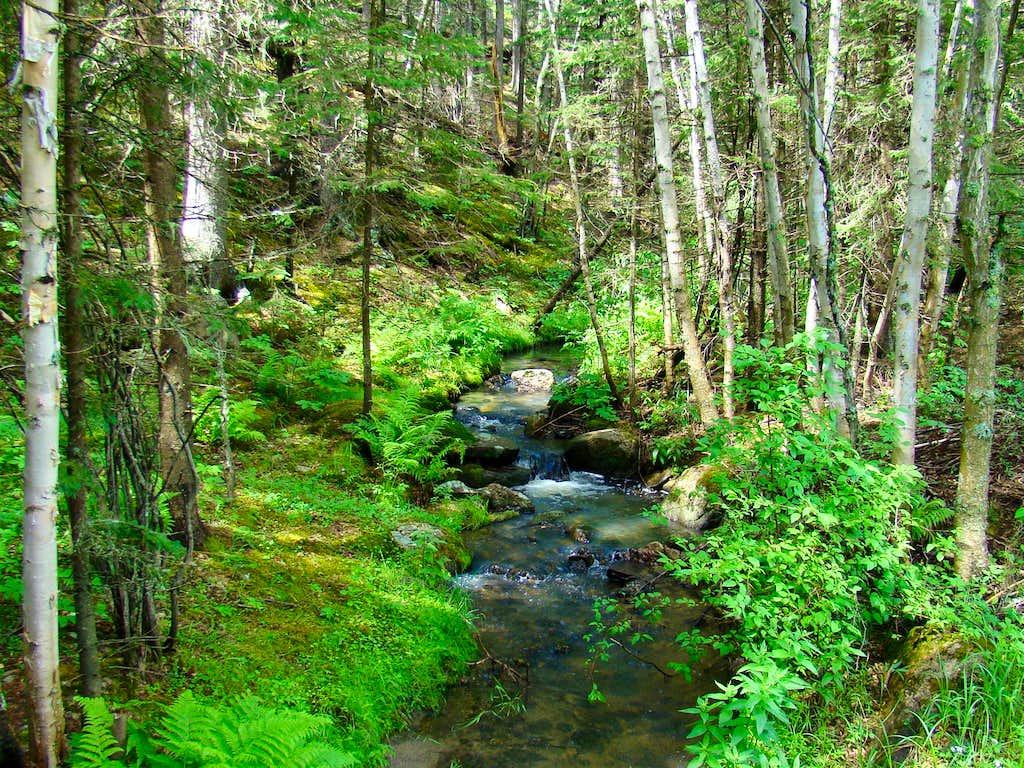 Iron Creek in Black Elk Wilderness
