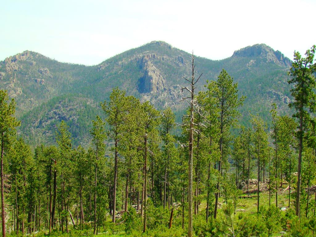 Summits in the Black Elk Wilderness